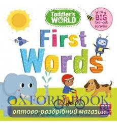 Toddlers World: First Words Villie Karabatzia 9781526380487 купить Киев Украина