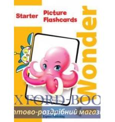 i-Wonder Starter Picture & Word Flashcards (INTERN 9781471570001 купить Киев Украина