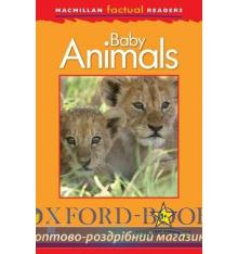 Книжка Macmillan Factual Readers 1+ Baby Animals ISBN 9780230432031