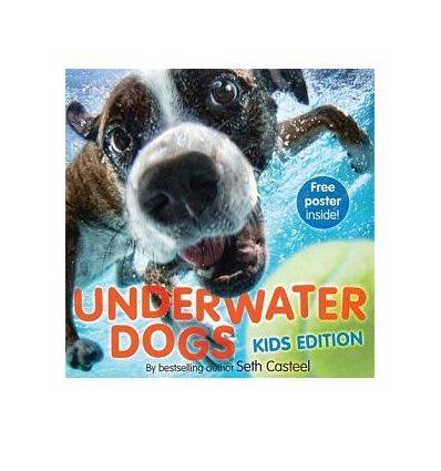 Книга Underwater Dogs. Kids Edition [Hardcover] Casteel, S ISBN 9781472211484