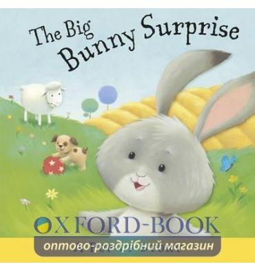 Книга The Big Bunny Surprise ISBN 9781848777699