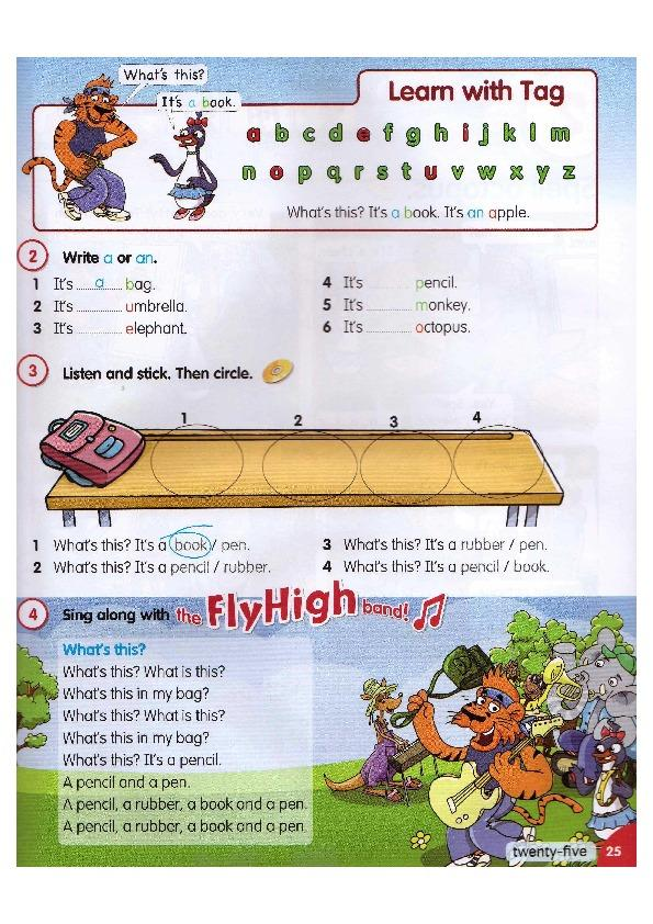 ebook Emergent lingua francas and